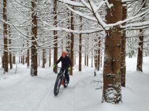activité hiver
